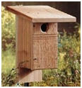 Do It Yourself Bluebird House