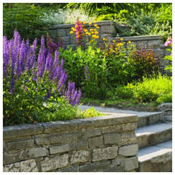 Improve your yard and landscape and increase the value of your home. With a little work and the help of these free project plans and landscape guides, you can do it yourself.