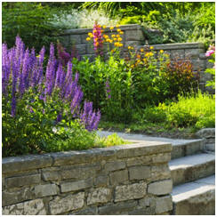 Free, Do-It-Yourself Landscape Project Plans