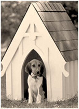 Free American Gothic Style Dog House Plans from SouthernPine.com -  This free isometric drawing shows all of the boards you need, cutting angles and gingerbread trim details.