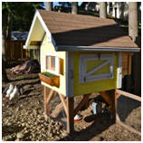 Hundreds of Free Chicken Coop Plans and Designs at BackyardChickens.com