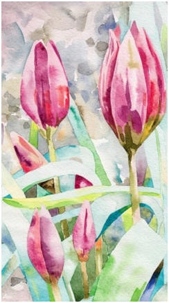 Learn how to create beautiful flower and still-life watercolor paintings. Enjoy free lessons and tutorials by talented professional artists.